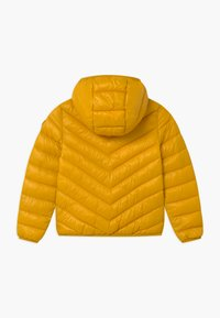 Benetton - BASIC GIRL - Zimní bunda - yellow - 1