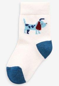 Next - 5 PACK DOG - Ponožky - blue - 2