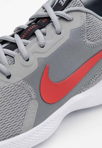Nike Performance - FLEX EXPERIENCE RUN 9 - Competition running shoes - particle grey/chile red/black/racer blue - 5