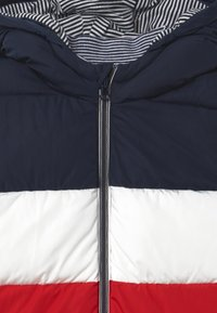 Petit Bateau - DOUDOUNE - Winter jacket - smoking/multi - 2