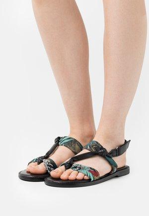 EVALOU - T-bar sandals - noir/multicolor
