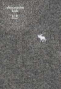 Abercrombie & Fitch - COZY HENLEY - Maglietta a manica lunga - grey - 3