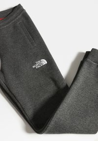 The North Face - Y FLEECE PANT - Tracksuit bottoms - tnfmediumgreyhtr/tnfwhite - 2