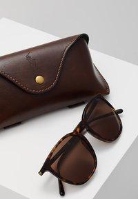 Polo Ralph Lauren - Sunglasses - dark havana/brown - 2