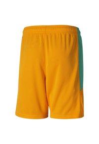 Puma - IVORY COAST HOME REPLICA YOUTH FOOTBALL - Sports shorts - flame orange-pepper green - 1