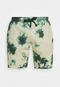 Redefined Rebel - COBY - Shorts - mountain view - 4