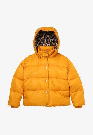 PUFFER JACKET - Winter jacket - marygold