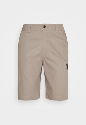 CARGO - Shorts - mineral grey