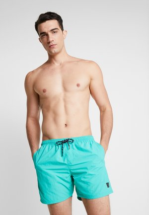 HESTER MENS SHORTS - Uimashortsit - carribean green