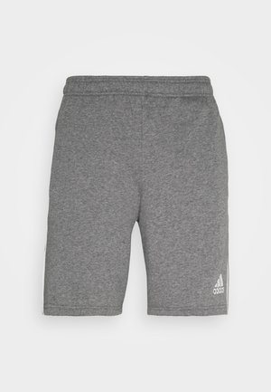 TIRO 21  - Sports shorts - grey