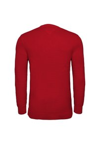 Tommy Jeans - ESSENTIAL  - Pullover - deep crimson - 1