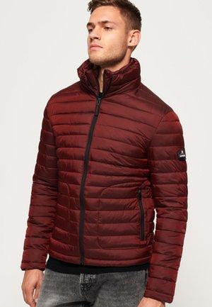 MIT DOPPELREISSVERSCHLUSS - Winter jacket - red