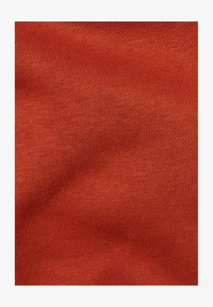 VARSITY FELT HOODED LONG SLEEVE - Sweat à capuche - cinnamon orange