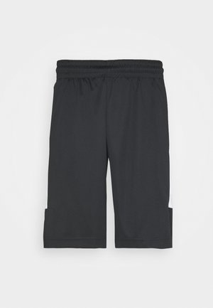 AIR DRY SHORT - Träningsshorts - black/white