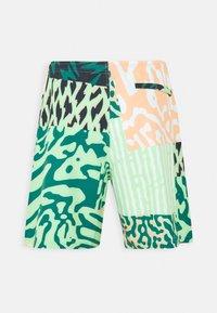 Burton - CREEKSIDE  - Outdoor shorts - composite - 1