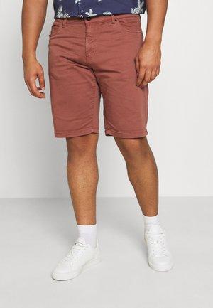 MARSHALL CHINO - Shorts - terracotta