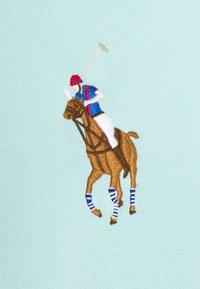 Polo Ralph Lauren - SEASONAL - Sweat à capuche - parakeet - 2
