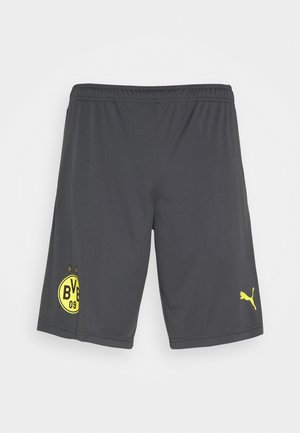 BVB BORUSSIA DORTMUND TRAINING SHORTS WITH POCKETS WITH ZIPPERS - Sports shorts - asphalt/cyber yellow