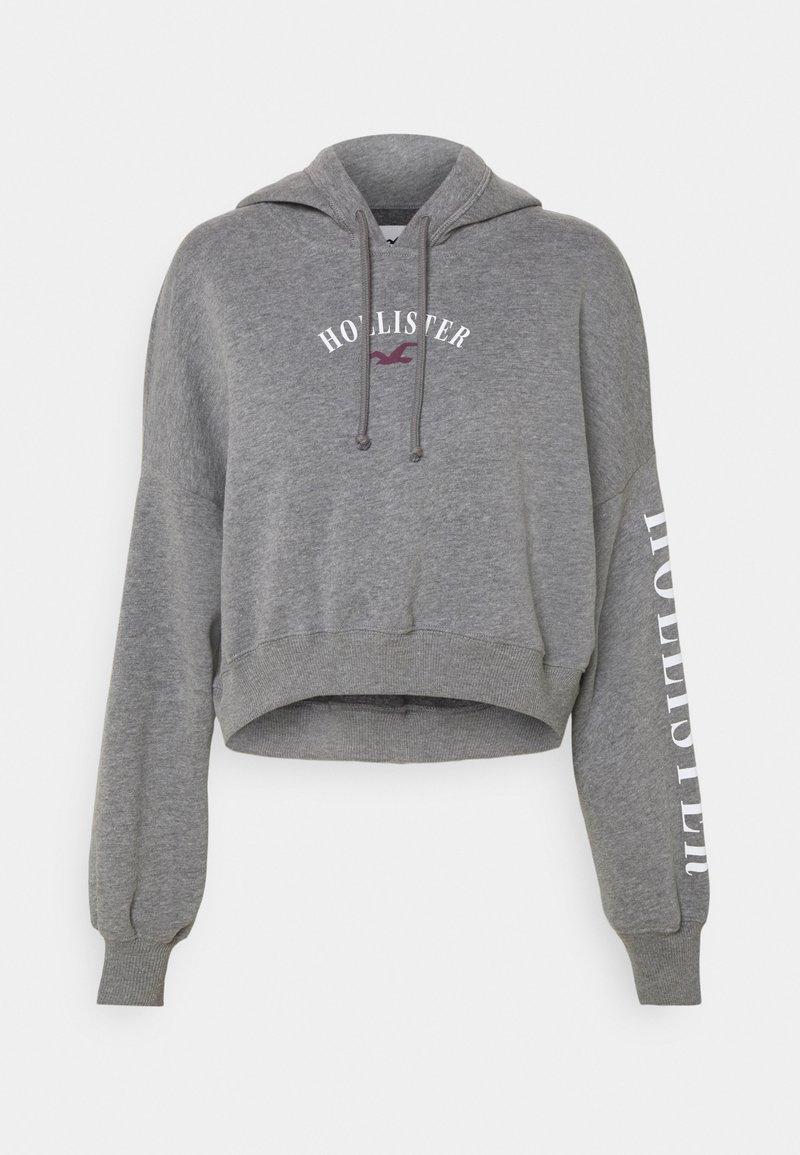 Hollister Co. - Sweatshirt - grey