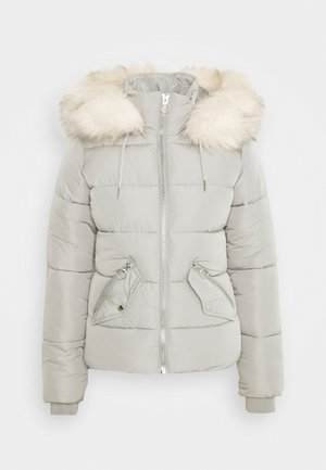 FREIDA - Winter jacket - grey
