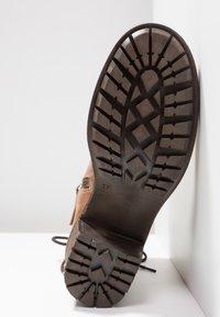 Pier One - Lace-up ankle boots - cognac - 6