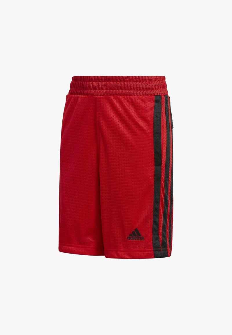 adidas Performance - Sports shorts - scarle