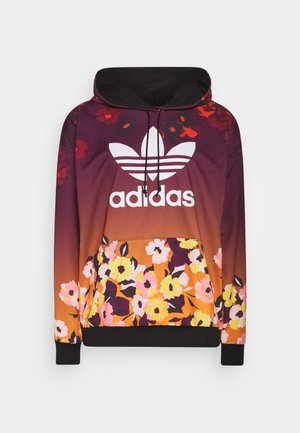 GRAPHICS SPORTS INSPIRED HOODED - Jersey con capucha - multicolor