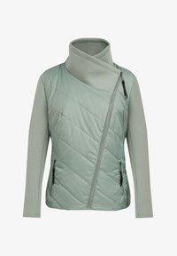 Finn Flare - Winter jacket - grey-green - 6