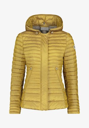 Winter jacket - olivenite