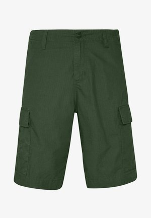REGULAR CARGO COLUMBIA - Shorts - cypress rinsed