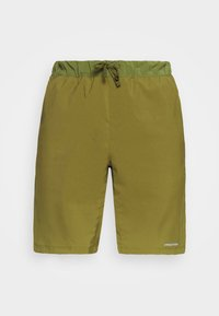 Patagonia - TERREBONNE SHORTS - Shorts - palo green - 5