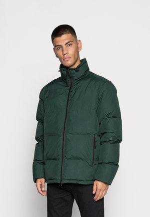 RECYCLE JUNOS - Winter jacket - scarab
