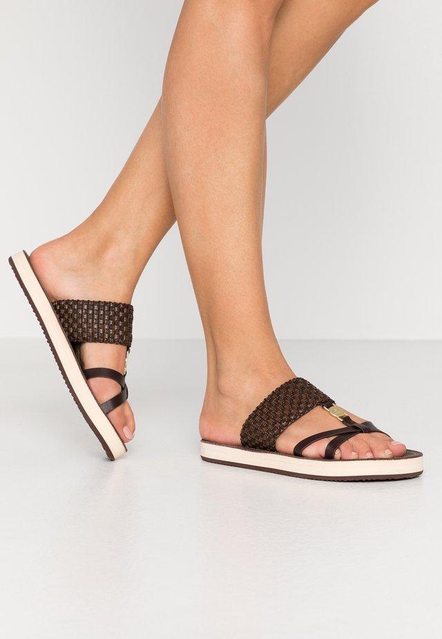 FLATVILLE - Pantofle - dark brown