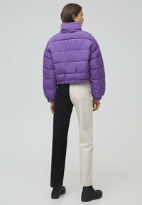 PULL&BEAR - Winter jacket - mottled purple - 2