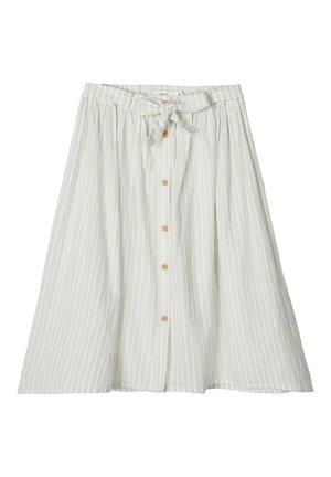 VE121I1E2-C12 - A-line skirt - dream blue