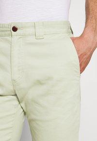 Tommy Jeans - SCANTON - Shortsit - bay laurel - 3