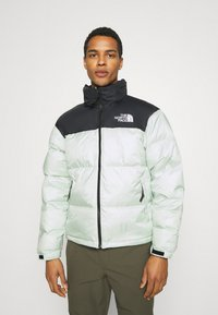 The North Face - RETRO UNISEX - Down jacket - green mist - 0