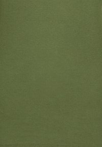 Marc O'Polo DENIM - LONGSLEEVE TURTLENECK - Long sleeved top - utility olive - 2