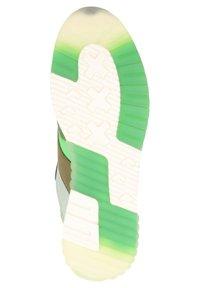 Scotch & Soda - Sneakers laag - green/cream multi s - 4