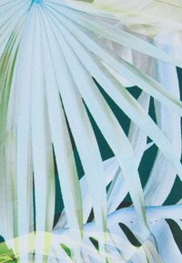 Etam - HAILY BIKINI - Bas de bikini -  vert - 2