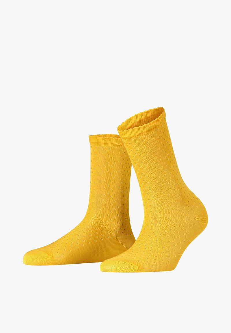 FALKE - POINTELLE - Socks - sun ray