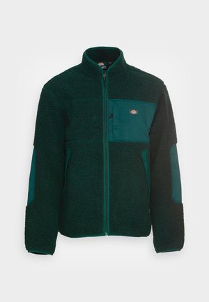 CHUTE - Winter jacket - ponderosa pine