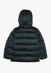 Kids ONLY - KONNAIOMI HOODED JACKET - Winter jacket - ponderosa pine - 1