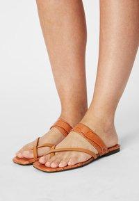 Toral - T-bar sandals - seta miel/coco cindy/marron - 0