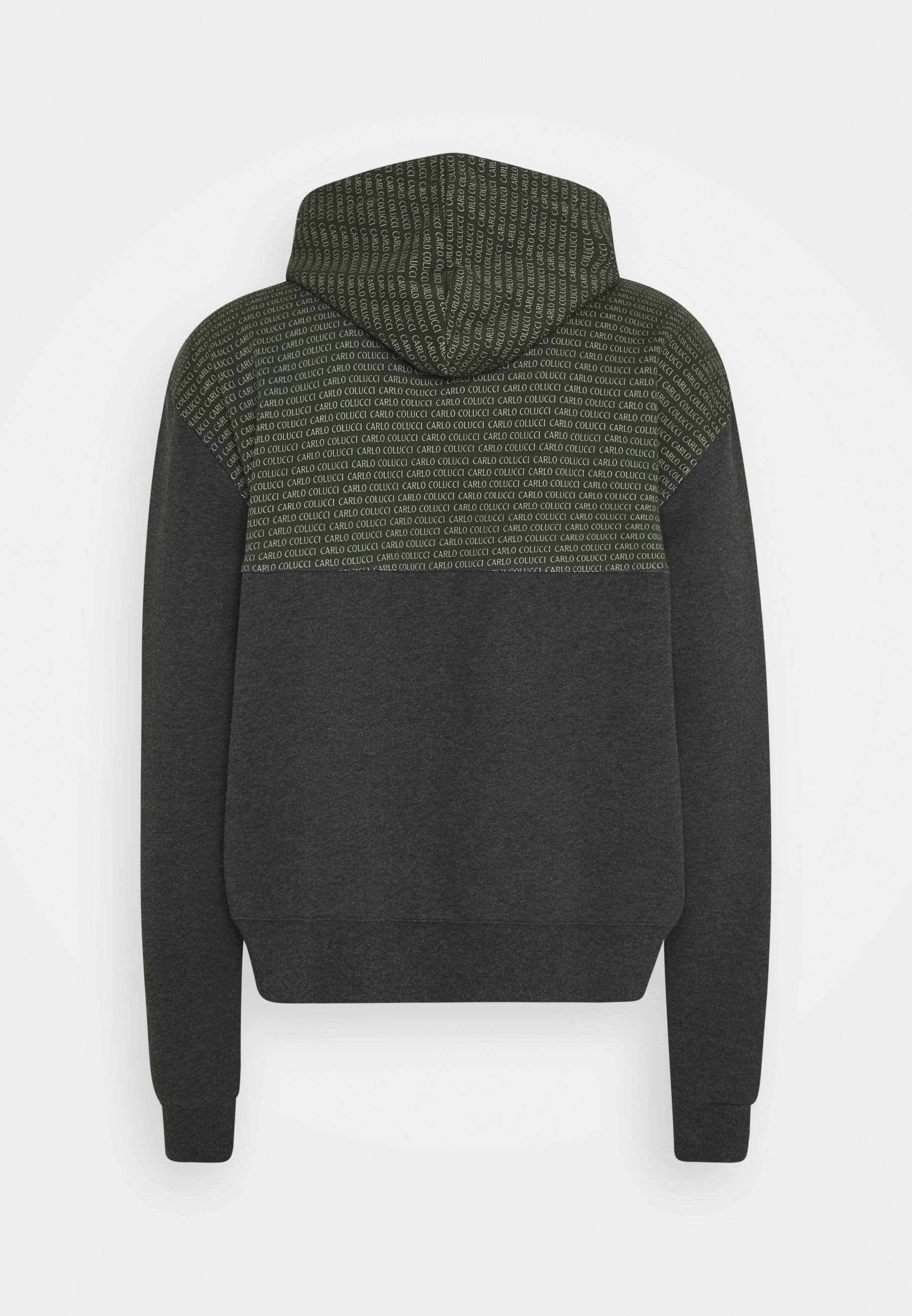 Carlo Colucci COLOR BLOCK LOGO - veste en sweat zippée - green LJyIimJi