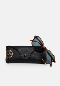 Ray-Ban - UNISEX - Sunglasses - shiny havana - 3