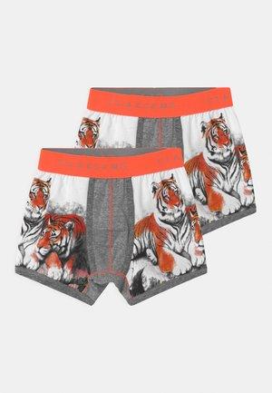 BOYS TIGER 2 PACK - Pants - orange