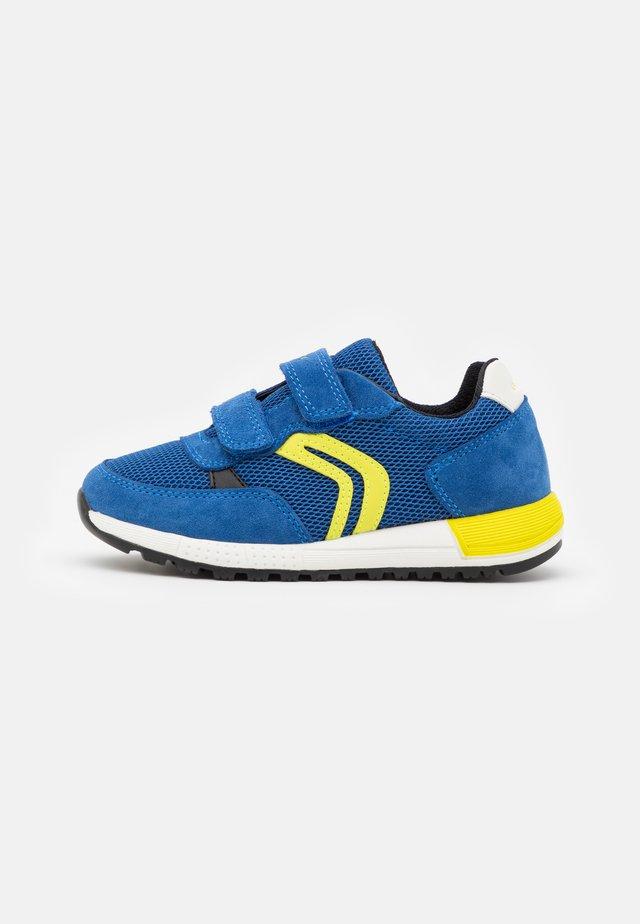 ALBEN BOY - Sneakers basse - royal/lime