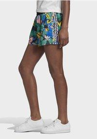 adidas Originals - Shorts - Shorts - Multicolour - 2