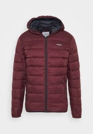 JJVINCENT PUFFER HOOD - Winterjacke - port royale